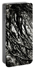 Snow On Pine Boughs Portable Battery Charger by Timothy Bulone