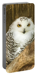 Snow Owl Portable Battery Charger