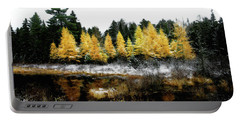 Snow Paints Larch Grove Portable Battery Charger