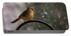 Portable Battery Charger featuring the photograph Snow Showers Female Northern Cardinal by Terry DeLuco