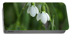 Portable Battery Charger featuring the photograph Snowdrops by Mary Jo Allen