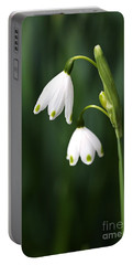 Snowdrops Painted Finger Nails Portable Battery Charger