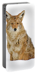 Snowy Coyote Portable Battery Charger