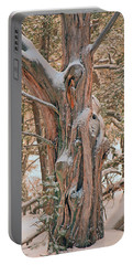 Snowy Dead Tree Portable Battery Charger
