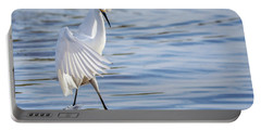 Snowy Egret 0322-111217-1cr Portable Battery Charger