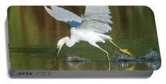 Snowy Egret 4845-091917-2cr Portable Battery Charger