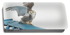 Snowy Model Ambition Portable Battery Charger
