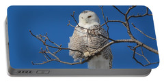 Snowy Owl 7 Portable Battery Charger