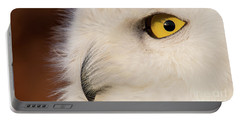 Snowy Owl Portrait Portable Battery Charger