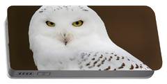 Snowy Owl Portable Battery Charger by Steve Stuller