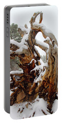 Portable Battery Charger featuring the photograph Snowy Roots 2 by Shane Bechler