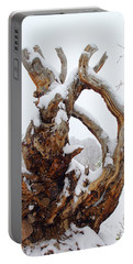 Portable Battery Charger featuring the photograph Snowy Roots by Shane Bechler