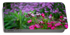 Portable Battery Charger featuring the photograph Soapwort And Pinks by Kathryn Meyer