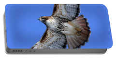 Soaring Red-tail Portable Battery Charger