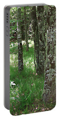 Portable Battery Charger featuring the photograph Soft Trees by Shari Jardina