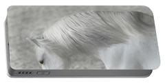 Softly Swept Portable Battery Charger