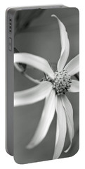 Softly Focused Portable Battery Charger