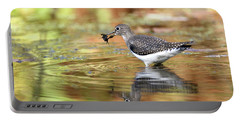 Solitary Sandpiper With Belostomatide Portable Battery Charger