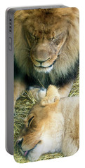 Someone To Watch Over Me Portable Battery Charger by David Stasiak