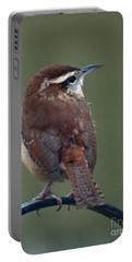 Song Bird 2 Portable Battery Charger