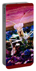 Sonoran Desert Ground Mantis Portable Battery Charger