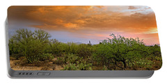 Portable Battery Charger featuring the photograph Sonoran Desert H11 by Mark Myhaver