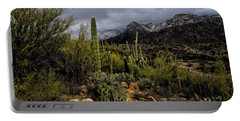 Sonoran Winter No.1 Portable Battery Charger