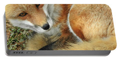 Soulful Eyes Portable Battery Charger