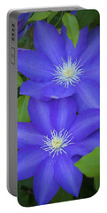 South Carolina Color Portable Battery Charger