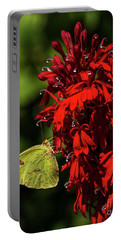 Southern Dogface On Cardinal Flower Portable Battery Charger