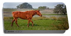 Portable Battery Charger featuring the photograph Southern Field by Melinda Ledsome