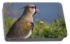 Southern Lapwing Portable Battery Charger by Pablo Rodriguez Merkel