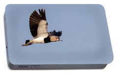 Southern Lapwing - Vanellus Chilensis Portable Battery Charger by Pablo Rodriguez Merkel