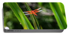 Sparkling Red Dragonfly Portable Battery Charger