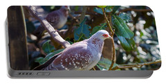 Portable Battery Charger featuring the photograph Speckle Pigeon by Donna Brown