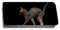 Sphynx Cat Funny Standing Isolated On Black Mirror Portable Battery Charger