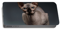 Sphynx Cat Sits In Front View On Black  Portable Battery Charger