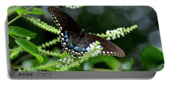 Spicebush Swallowtail Butterfly Portable Battery Charger by Carol Bradley