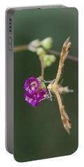 Spiderling Plume Moth On Wineflower Portable Battery Charger