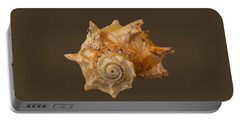 Spiral Shell Transparency Portable Battery Charger