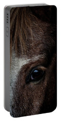 Spirit Portable Battery Charger