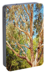 Portable Battery Charger featuring the photograph Spot The Koala, Yanchep National Park by Dave Catley