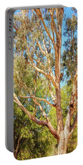 Spot The Koala, Yanchep National Park Portable Battery Charger