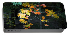 Spotlight On Fall Portable Battery Charger