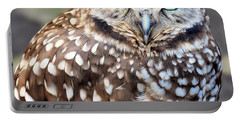 Spots - Burrowing Owl Portable Battery Charger