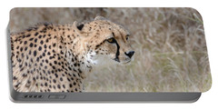 Portable Battery Charger featuring the photograph Spotted Beauty 2 by Fraida Gutovich
