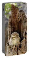 Spotted Owlet Portable Battery Charger