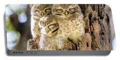 Spotted Owlets Portable Battery Charger