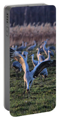 Portable Battery Charger featuring the photograph Spread Your Wings by Shari Jardina