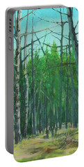 Spring Aspens Portable Battery Charger
